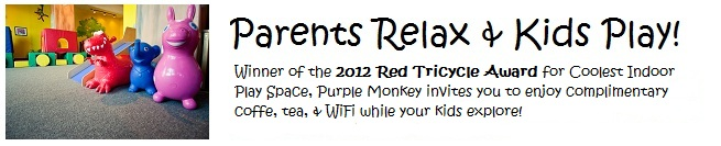 Purple Monkey Playroom - fun indoor play for kids in Chicago